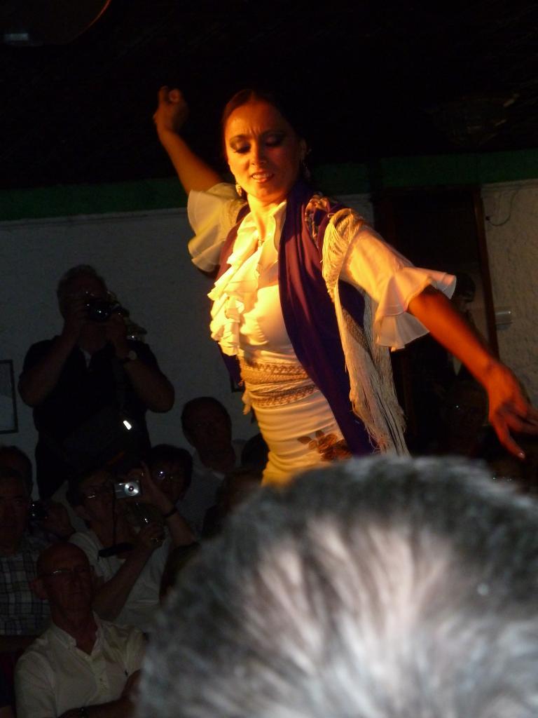 2014- ANDALOUSIE=soirée flamenco