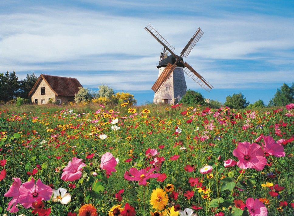 Moulin hollande